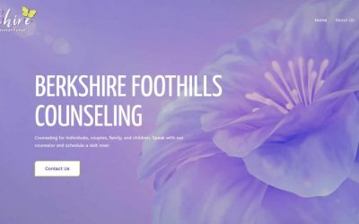 screencapture-berkshirefoothillscounseling-2020-01-22-15_20_08